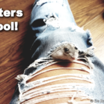 hamsters zijn cool