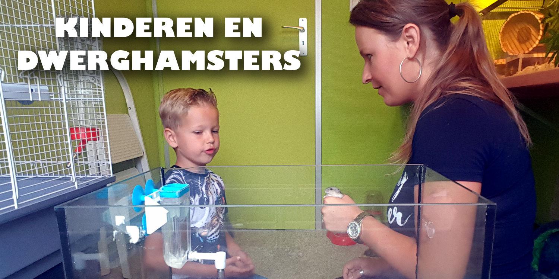 hamster kind