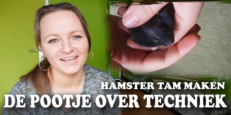 hamster-tam-maken-pootje- over