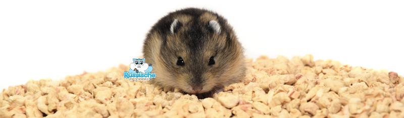 corbo bodembedekking voor hamsters