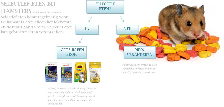 selectief-eten-hamster